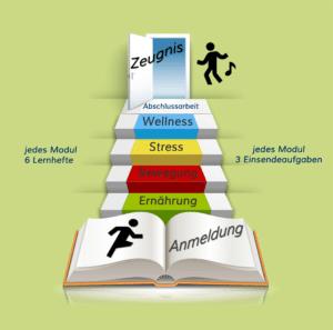 In 6 einfachen Schritten zum Gesundheitsberater